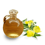 Primula flower extract