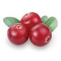 Crannberry